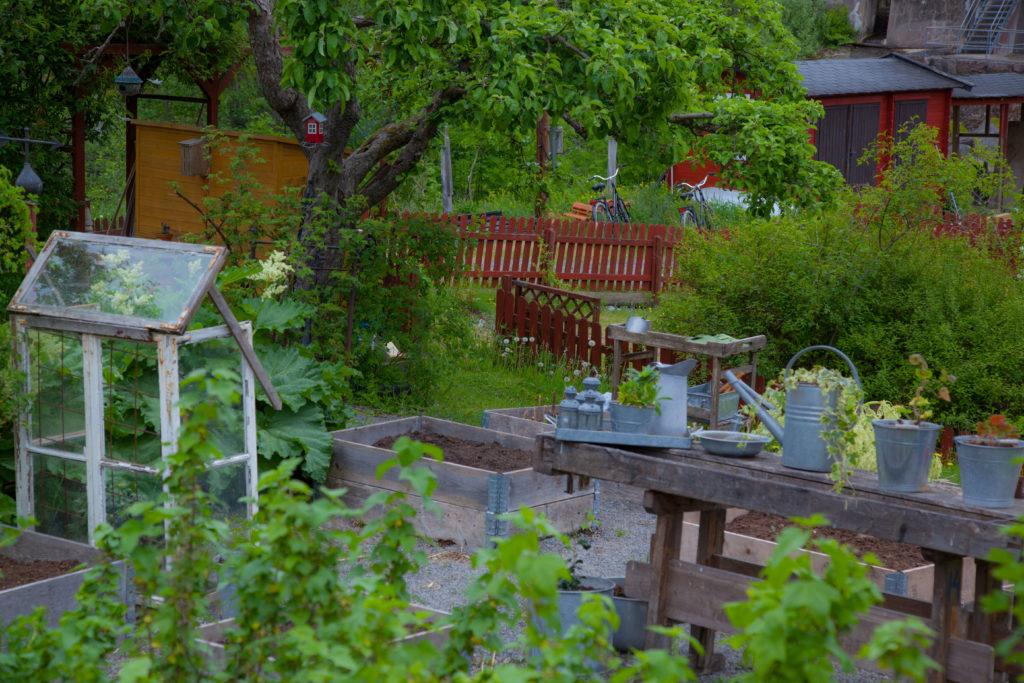 Tofvehult köksträdgård