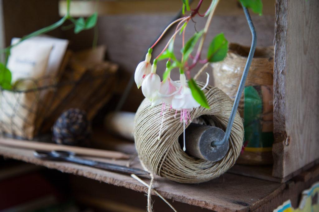 Trådrulle och fuchsia