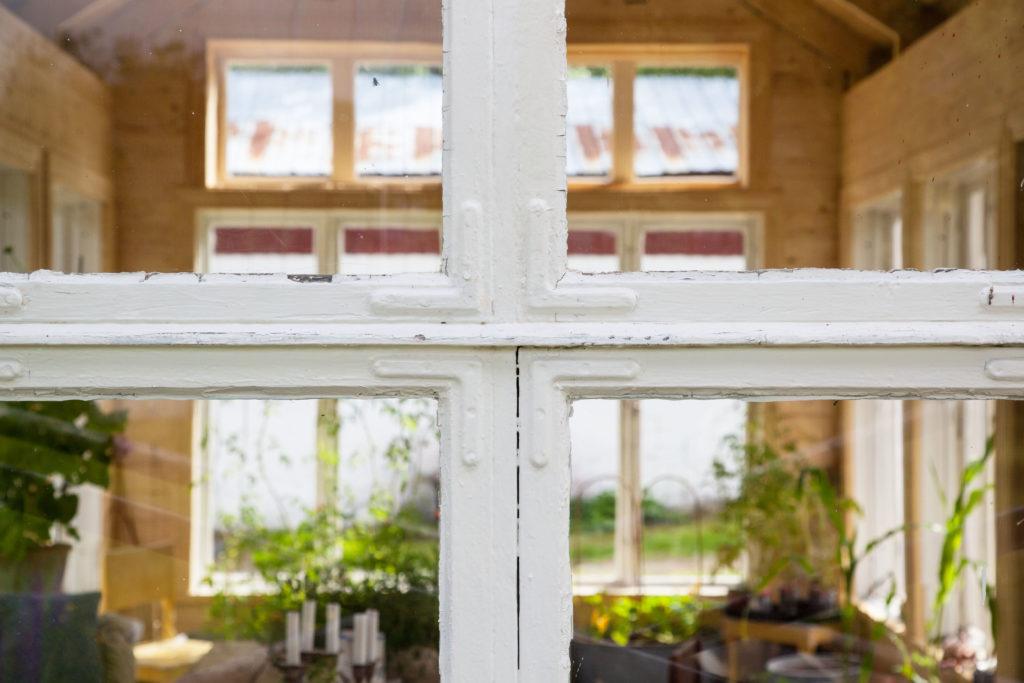Växthus fönster närbild