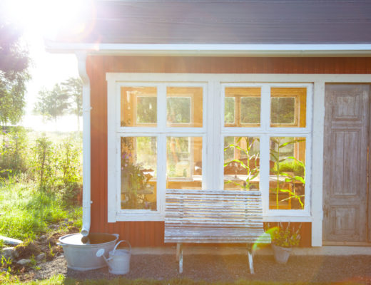 Växthuset i morgonsol