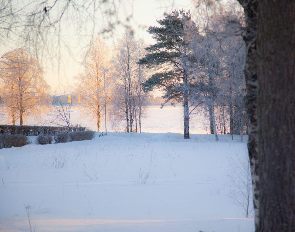 Vinterviken