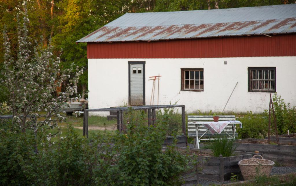 Ladugården och köksträdgården