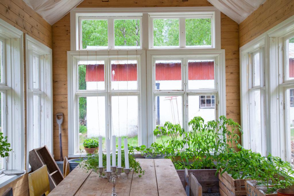 Växthuset åt söder